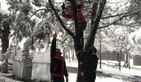 Dron sert rüzg� rın etkisiyle ağacın dallarına takıldı