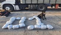TIR daki uyuşturucuyu narkotik köpeği Uzi buldu