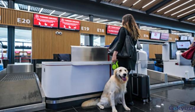 İstanbul Havalimanı'nda evcil hayvanla seyahat(video)